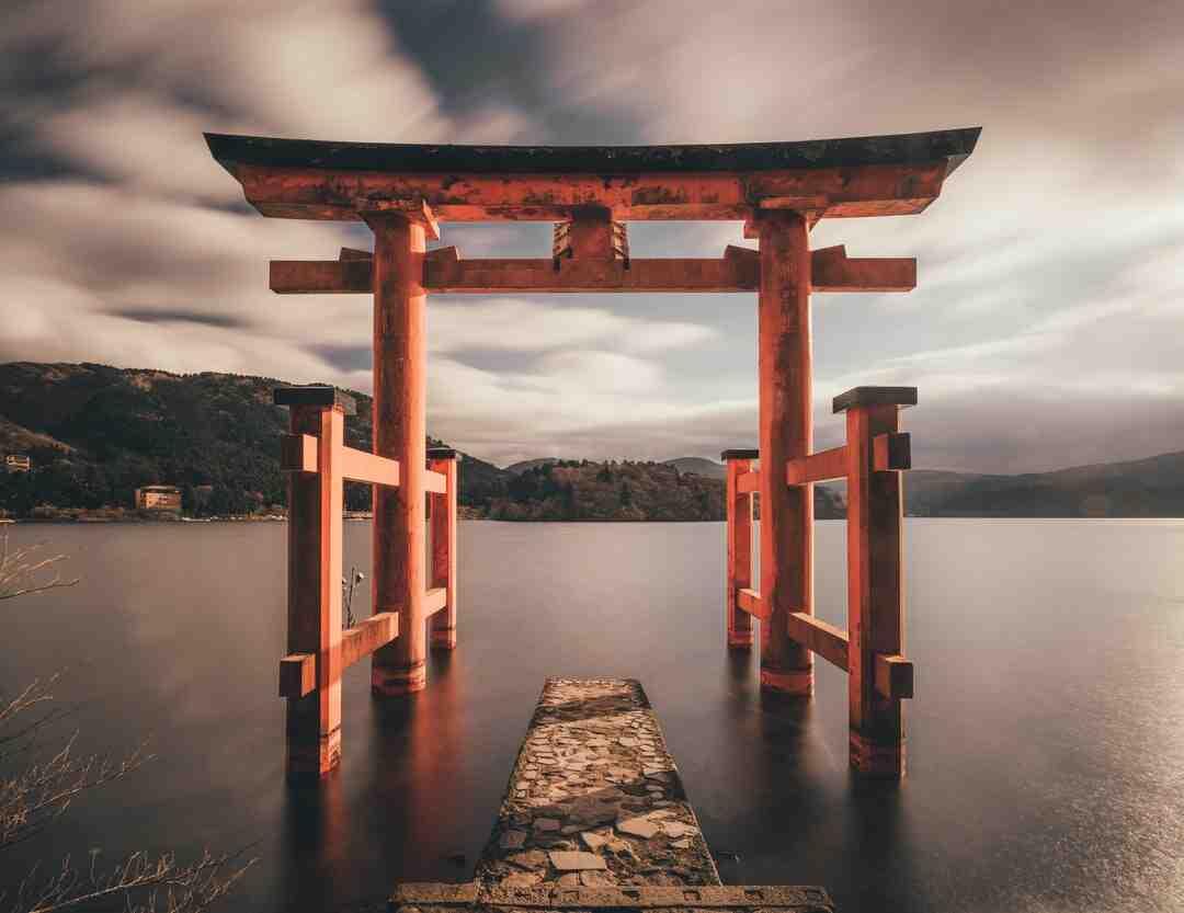 Quelle terre pour un érable du Japon ?