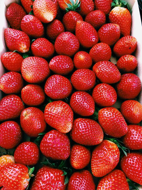 Quand planter les fraisiers avec la lune 2021 ?