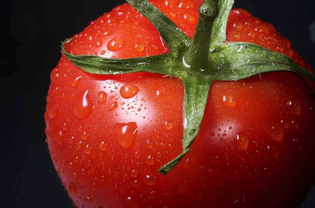 Comment faire une sauce tomate