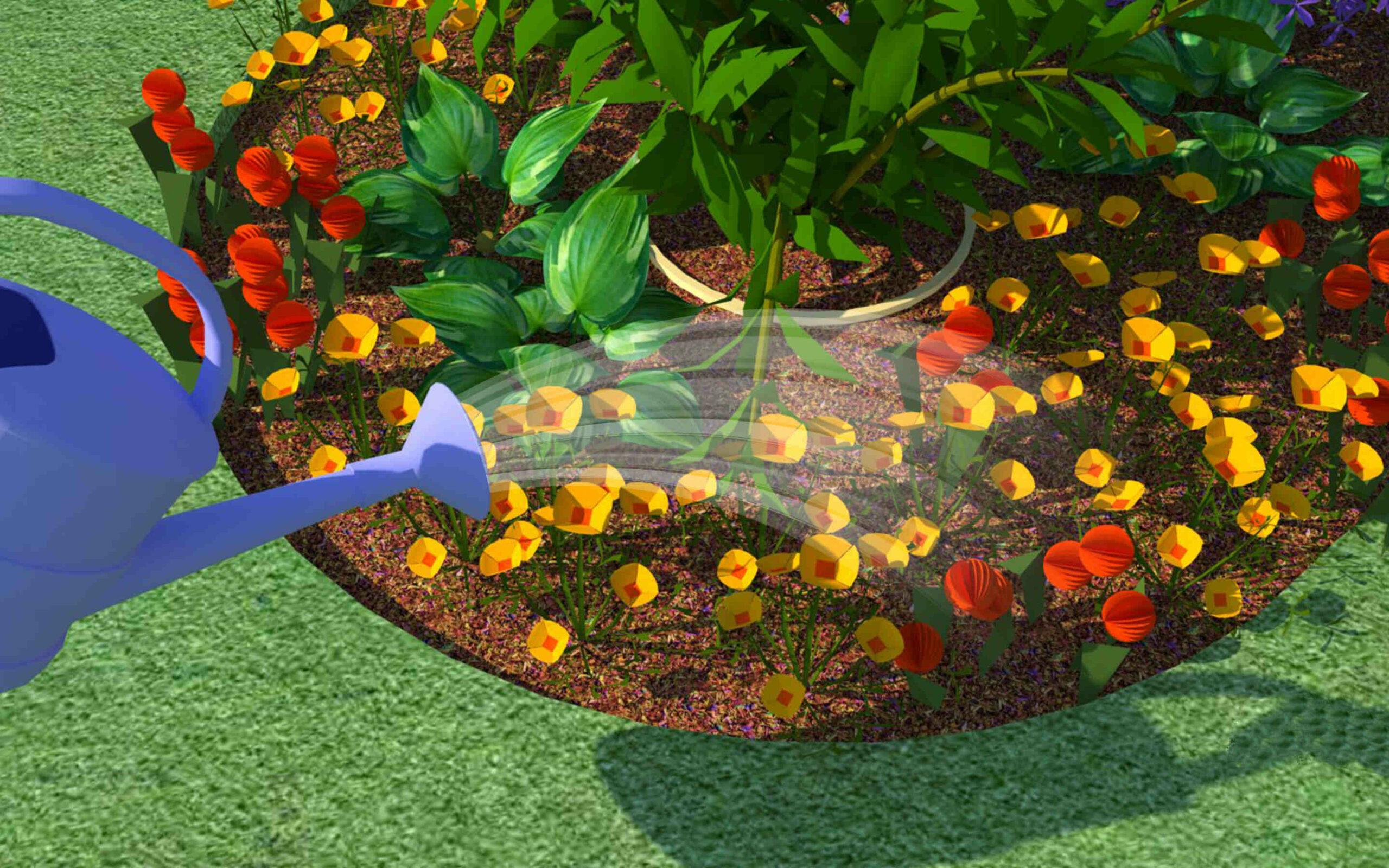 Où planter des fleurs dans le jardin ?