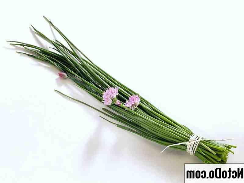 Quelles herbes aromatiques planter ensemble ?